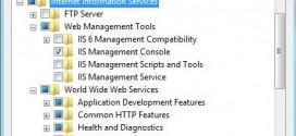 Windows 8 IIS Kurulum (Resimli Anlatım)
